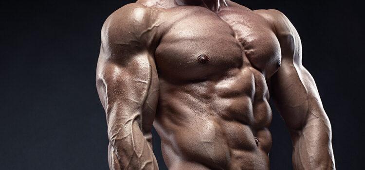 Growth hormone in bodybuilding
